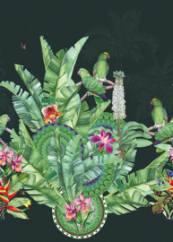 Behangexpresse Checking out Nature Fotobehang TD4110 Lorinea Emerald/Botanisch/Vogels/Papegaai Behang