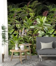 Behangexpresse Special Edition AK1063 Leaves Wall/ Botanisch/Planten/Bladeren/Natuurlijk Fotobehang
