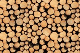 AS Creation Wallpaper 3 XXL Fotobehang 471751 XL Stack Of Wood/Stapel Hout/Landelijk/Natuurlijk