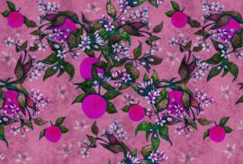 ASCreation Walls by Patel Fotobehang Grapefruit Tree 2 DD114262 Vrucht/Boom/Natuurlijk
