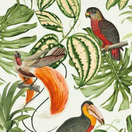 Behangexpresse Paradisio Behang  6302-07 Botanisch/Planten/Vogels