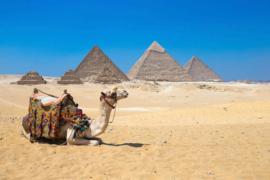 AS Creation Wallpaper XXL3 Fotobehang 470601XL Gizain Cairo/Piramide/Kameel
