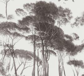 AS Creation History of Art Behang 37651-1 Bomen/Natuurlijk/Modern/Landelijk