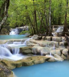 Dimex Fotobehang Waterfall MS-3-0086 Waterval/Natuur/Water/Bomen