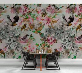 Walls by Patel DD110176 Funky Birds 1 Fotobehang - ASCreation