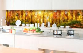 Dimex Zelfklevende Keuken Achterwand Sunny Forest KL-350-084 Natuur/Bomen/Bos