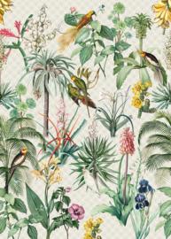 Behangexpresse Floral-Utopia Fotobehang INK7558 Tropical Morning/Grafisch/Papegaai/Vogels/Tropisch