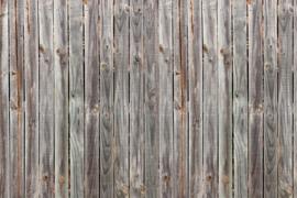 AS Creation Wallpaper 3 XXL Fotobehang 471750 XL/Plank Dark/Planken/Hout