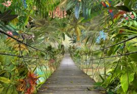 Komar Home Imagine Edition 4 Fotobehang 8-977 Wild bridge/Hangbrug/Botanisch/Natuurlijk
