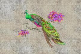 ASCreation Walls by Patel Fotobehang Peacock 1 DD114307 Vogels/Dieren/Pauw/Barok