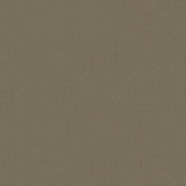 AS Creation Floral Impression Behang 37748-1 Uni/Structuur/Natuurlijk/Modern