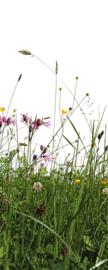 AS Creation Wallpaper 3 XXL Deurposter 735 Gras/Botanisch/Wilde Bloemen/Zelfklevend