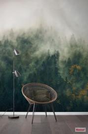 Komar Pure PSH036-VD3 Tales Of The Carpathians/Bergen/Landschap/Bomen/Natuur Fotobehang Noordwand