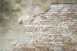 Dimex Fotobehang Grunge Wall MS-5-0168 Beton/Steen/Industrieel/Vintage