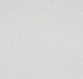 BN Wallcoverings van Gogh 2 Behang 17115 Uni/Structuur/Landelijk