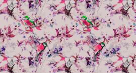 AS Creation Living walls by Patel Fotobehang DD110227 Songbirds 1/Vogels/Botanisch Behang