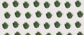 AS Creation AP Digital4 Behang DD109006 Leaf Pattern/Botanisch/Planten Fotobehang