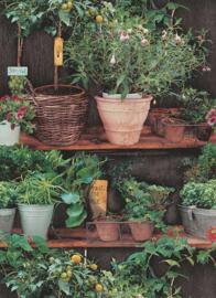 Behangexpresse Instawalls 6386-07 Botanisch/Planten/Vintage/Natuur Behang