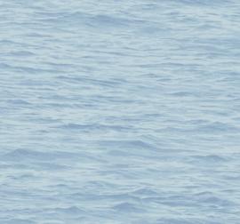 Dutch Wallcoverings Navy, Grey & White Behang BL71312 Zee/Water/Golven