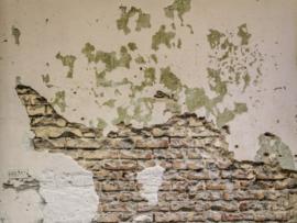 BN Wallcoverings BN Studio 30588 Scrapwood/Steen/Beton/Verweerd/Industrieel/Landelijk