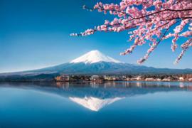 AS Creation Wallpaper XXL3  Fotobehang 470603XL Fuji/Berg/Japan