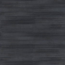 Rasch Club Behang 418514 Leer structuur/Strepen/Modern/Natuurlijk/Zwart