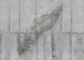 Komar Home Imagine Edition 4 Fotobehang X7-1023 Concrete Feather/Veer/Beton/Natuurlijk