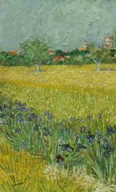 Van Gogh BN Wallcoverings Behang 30543 Landschap/Iris Fotobehang