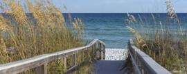 Dimex Fotobehang Sandy Boardwalk MP-2-0212 Panorama/Strand/Loopplank/Riet