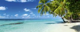 Dimex Fotobehang Paradise Beach MP-2-0215 Panorama/Strand/Tropisch/Palm boom