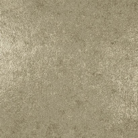 Dutch Wallcoverings Galactik Behang L72202 Uni/Modern/Landelijk/Beton/Metallic