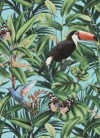 Behangexpresse Paradisio 2 Behang 10121-18 Toekan/Vogels/Botanisch/Natuurlijk/Tropical