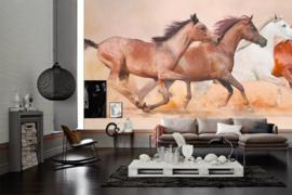 AS Creation Wallpaper XXL3  Fotobehang 470606XL Herd Gallops/Paarden/Dieren