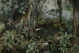 AS Creation Living walls by Patel Fotobehang DD110697 Jungle 2/Oerwoud/Planten Behang