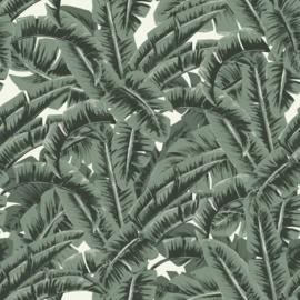 Esta Home Paradise Behang 154-139156 Botanisch/Bladeren/Natuurlijk/Modern