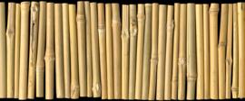 AS Creation AP Digital4 Behang DD108651 Bambus on Black/Hout/Natuur Fotobehang