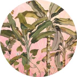 Komar Home Imagine Edition 4 Fotobehang D1-029 Botany/Botanisch/Cirkel/Natuurlijk