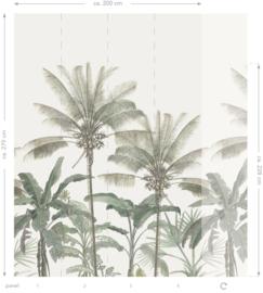 Esta Home Paradise Fotobehang 158947 Botanical palm trees/Botanisch/Palmbomen/Bomen