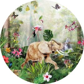 Behangexpresse Sofie & Junar Circle INK324 Jungle Dance/Dieren/Olifant/Flamingo