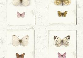 Splendour SD2001  Vlinders/Vintage Behang - Hookedonwalls