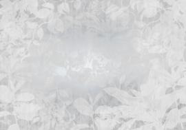 Noordwand Komar Raw Fotobehang RSX8-057 Flora/Bladeren/Botanisch/Natuurlijk