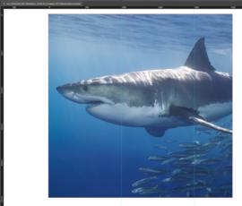 AS Creation Wallpaper 3 XXL Fotobehang 470685XL/Zee/Vissen/Natuur/Shark/Haai