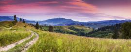 Dimex Fotobehang Blooming Hills MP-2-0061 Panorama/Natuur/Landschap/Uitzicht