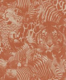 Rasch Kalahari Behang 704723 Dieren/Vogels/Tijger