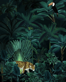 Komar Home Imagine Edition 4 Fotobehang X4-1027 Jungle Night/Panter/Toekan//Botanisch/Bladeren