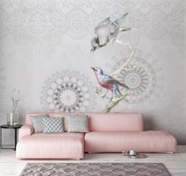 Behangexpresse Circle of Life/Select.D Fotobehang TD4189 Miro/Mandala/Vogels/Kantwerk