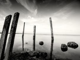 Onsfotobehang Fotobehang SL1070 Zee/Palen/Modern/Grijs