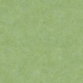 Noordwand Evergreen Behang 7333 Bladnerf/Botanisch/Natuurlijk/Groen
