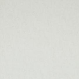 BN Wallcoverings van Gogh 2 Behang 17128 Uni/Structuur/Landelijk