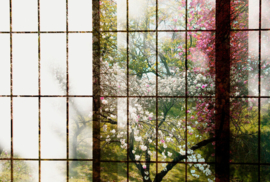 ASCreation Walls by Patel Fotobehang Orchard 1 DD113727 Boomgaard/Natuur/Bomen/Bloemen